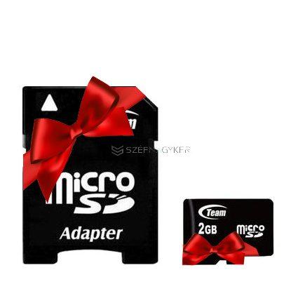 2GB MICRO SD CARD