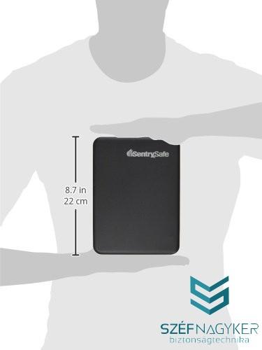 P005C Kis méretű, hordozható értéktároló